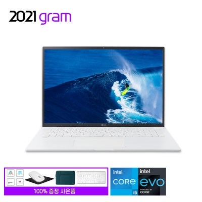2021 17Z90P-GA56K 램8G SSD512G WIN10 탑재
