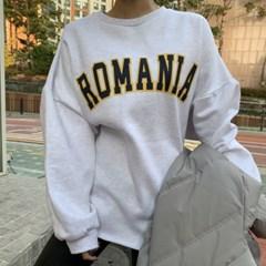 양 기모 긴팔 겨울 라운드 롱 루즈핏 박스 빅 티셔츠