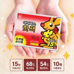 아이리스 포켓용 핫팩 손난로 보온효과 100매입_(1871532)