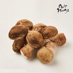 [남도장터]송화버섯 선물세트 고급형 1kg