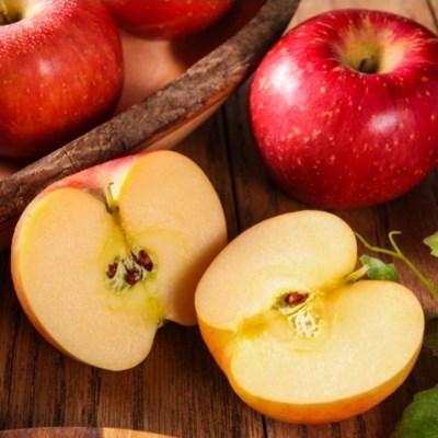 농사랑 명절에 먹어야 제일 맛있는 과일 신선식품 선물세트 할인전