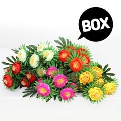 BOX판매 목단아레카 8개 성묘 산소 꽃 납골당 조화_(2276429)