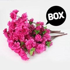 BOX판매 스윗진달래 12개 성묘 산소 꽃 납골당 조화