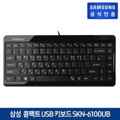 컴팩트 USB 미니키보드 SKN-6100UB