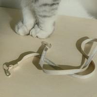NFM mask strap