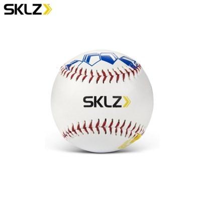 스킬즈 피치 트레이닝 베이스볼 야구 피칭 연습용품