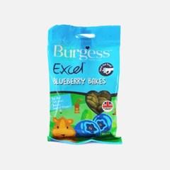 Burgess Excel 블루베리 쿠키 80g_(3661348)