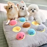 두더지 강아지 노즈워크 장난감