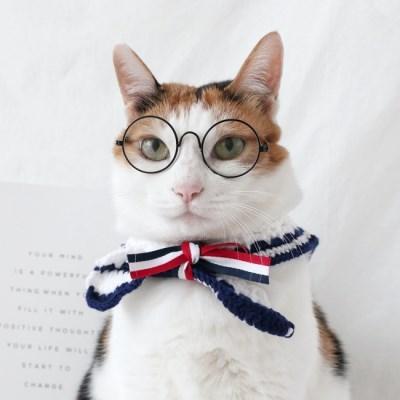 니트 세라 케이프 스카프 반다나 고양이 강아지 목도리 MIYOPET
