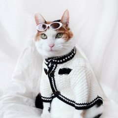 럭셔리 화이트 가디건 고양이옷 강아지옷 설빔 할로윈 선물 MIYOPET