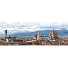 950피스 직소퍼즐 - 피렌체 역사 지구