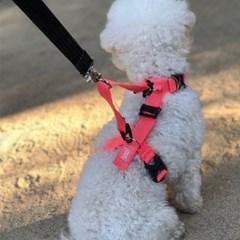 (러블리게이즈) 강아지 두줄 하네스 가슴줄