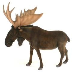 5604-말코손바닥사슴 110cm.H