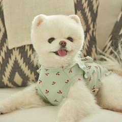 체리 프릴 강아지 실내복 (민트)