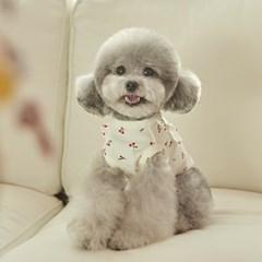 체리 프릴 강아지 실내복 (화이트)