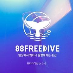(서울) 프리다이빙 중급(Lv 1+2) 라이센스 패키지 과정