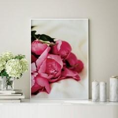 아무르 모란 목단 꽃 그림 인테리어 액자