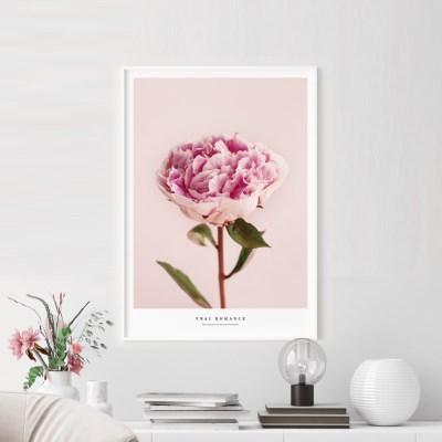 로멘스 모란 꽃 그림 인테리어 액자