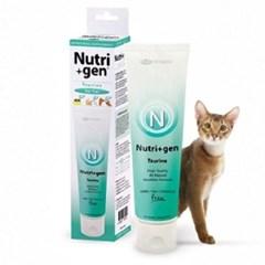 고양이필수영양제 타우린 영양제 시신경 자세유지
