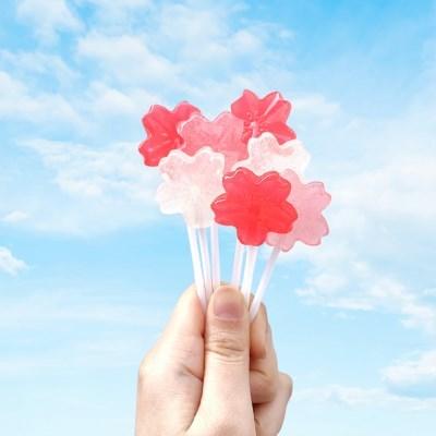 벚꽃캔디만들기 홈베이킹 사탕만들기
