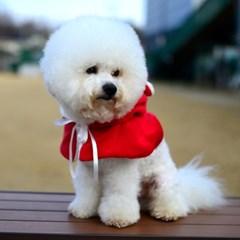 강아지 산타복 코스튬 - 메리크리 멍냥 케이프 강아지