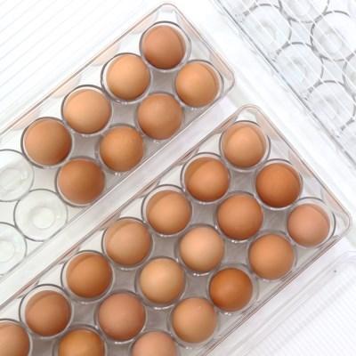클리어 계란 보관함 케이스 21구