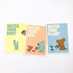 Watering Series 엽서