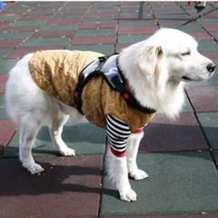 강아지 산책용 패션 의류 깔깔이 바람 막이 점퍼 3XL