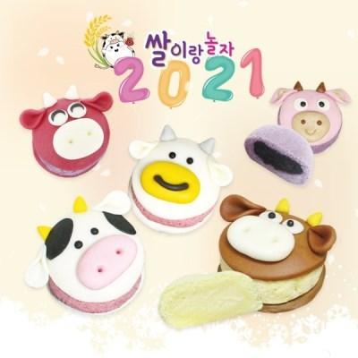 새해 행복 쌀카롱 만들기 쌀이랑놀자 마카롱 DIY키트