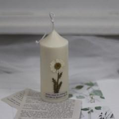 9월 탄생화향초캔들 마가렛향초 기념일선물 생일선물 캔들선물