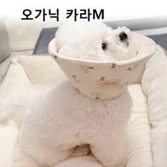 강아지 고양이 깔대기 케이프 펫 오가닉 카라 M
