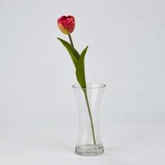 [모던하우스] 튤립 뷰티