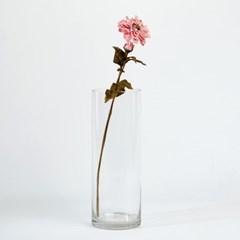 [모던하우스] 백일홍시리즈 58cm