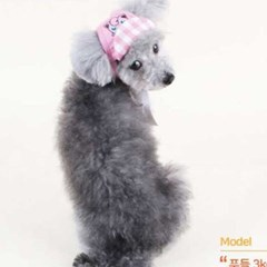포켓몬스터x다솜 푸린 홈즈 모자