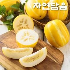 자연담움 성주꿀참외 5kg (8-10과)