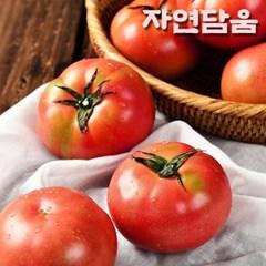 자연담움 완숙 찰토마토 5kg (1번)