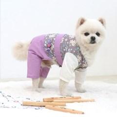 강아지 신사한복 애견옷 반려견 명절의류 펫용품