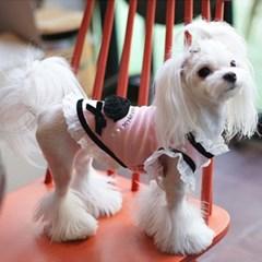 강아지 원피스 핑크 반려견치마 애견패션의류용품