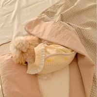 오가닉 레인보우 체크 양면 사계절 블랭킷 강아지이불 고양이이불