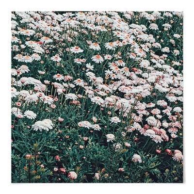 패브릭 포스터 S084 꽃 인테리어 빈티지 식물 액자 꽃밭 B