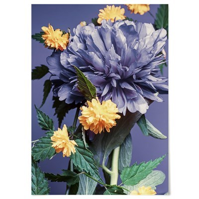 패브릭 포스터 F344 꽃 인테리어 그림 식물 액자 블루밍 A