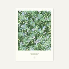 floraison • type B