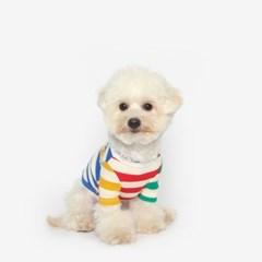 강아지 컬러블럭 맨투맨 티셔츠