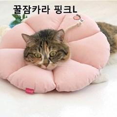 애견목보호대 강아지 애견카라 핑크L 위생가이드