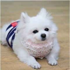 애견 강아지 목받침 플라워 스카프 패션 식사 턱받이