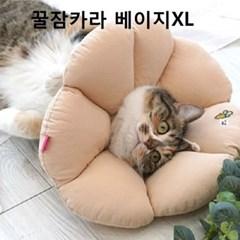 애견목보호대 강아지 애견카라 베이지XL 깔대기