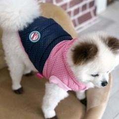 쁘띠 도트 땡땡이 강아지 패딩_(765845)