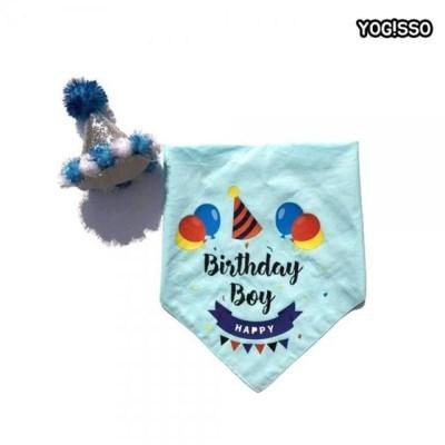 강아지 고양이 생일 고깔 블루 세트 파티 용품 이벤트