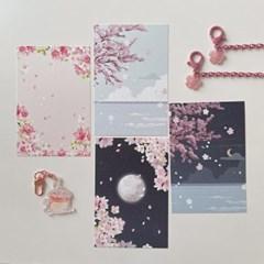 쭈키즈 봄 벚꽃 엽서