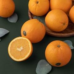 리릿 퓨어스펙 블랙라벨 오렌지 3kg 대과